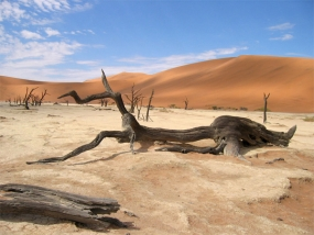 El exceso de calor produce lugares inhabitables